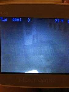 Infant Optics screen showing grainny image due to poor night vision.